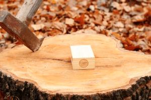 producttest houten speaker
